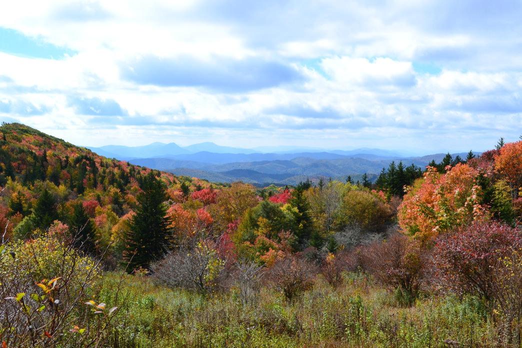 20170719_Virginia_Grayson Highlands-fall