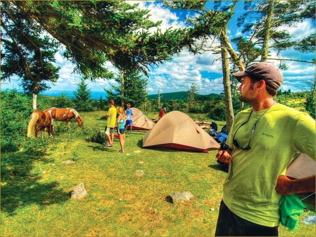 Appalachian Trail campers watch wild ponies graze.