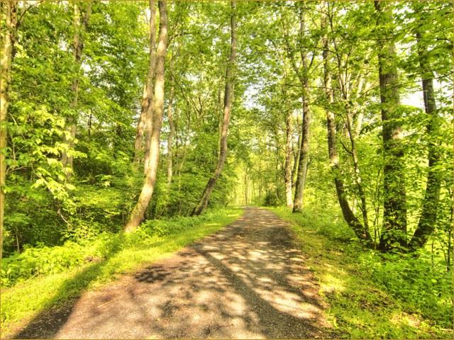 The scenic Virginia Creeper Trail