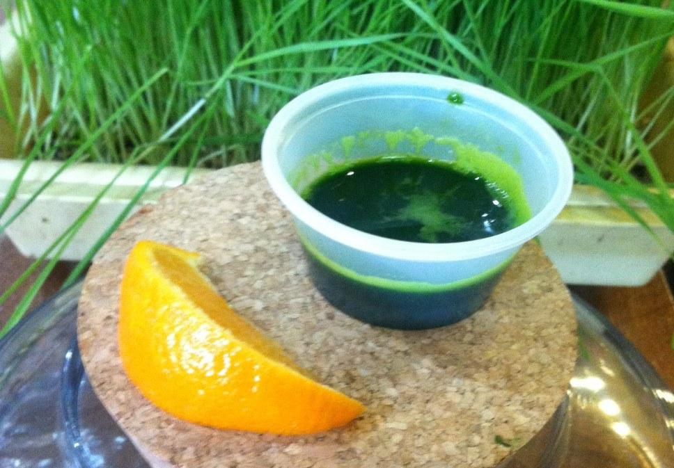 white birch juice 2