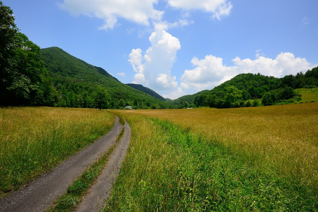 20170609_Virginia_Virginia Creeper Trail_Biking