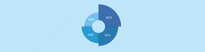 How useful is ACV as a standalone metric?