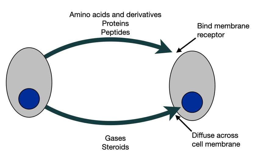 Diagram of different types of molecules that cells use to communicate with each other.